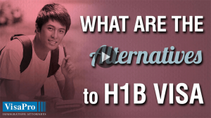 What Can You Do After H1B Cap Has Reached?