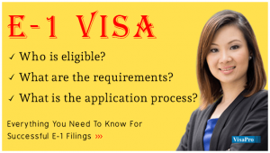 What Is E1 Visa Application Process?