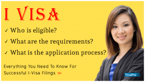 What Is An I Visa Application?