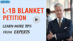 Learn More Tips From Experts About Blanket L Petitions.