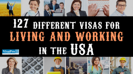 How To Live And Work In The USA.