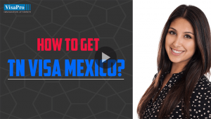 Learn All About TN Visa For Mexican Citizens.