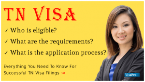 A Complete Guide For TN Visa Application Process?