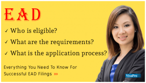 All About USCIS Employment Authorization Document Application Process.
