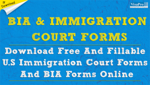 Download Free And Fillable US Immigration Court Forms.