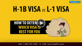 Know The Difference Between H1B And L1 Visa.