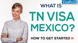 All About TN Visa Requirements For Mexican Citizens.