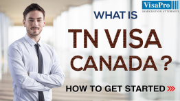 Learn About TN Visa For Canadian To Work In USA.