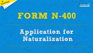 Download INS Form N-400 Application For Naturalization Instructions.