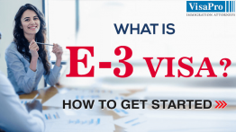 Requirements For E3 Visa How To Get Started?