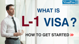 Procedure And Steps For Filing L1 Visa.