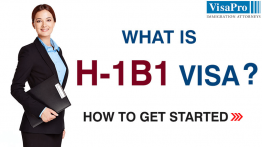 How To File H1B1 Visa?