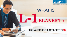 How Long Does It Take For Filing L1 Blanket Visa?