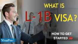 Learn About How To Get Started With L2B Visa.