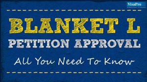 Blanket L Petition Approval & Requirements