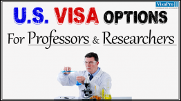 Visa Options For Foreign Professors And Foreign Researchers.