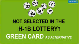 What Is An Alternative If Not Selected In The H1B Lottery?