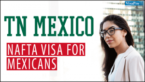 TN NAFTA Visa For Mexican Professional Workers.