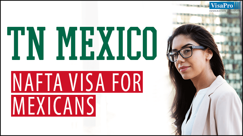 TN Mexico: How To Apply NAFTA Visa For Mexican Professionals?