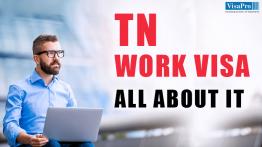 US Work Visa For TN NAFTA Professionals From Canada