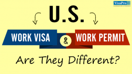 How To Get Work Permit In USA?