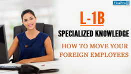 How To Move Your Foreign Employee Using L1B Visa.