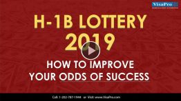 Know About H1B Visa 2019 Lottery Status.