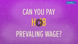 Indian Staffing Companies In USA: How To Stay In Compliance Under The H1B Program?